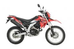 0311_Motores_loncin